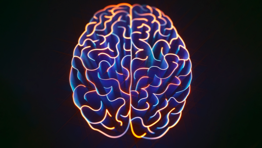 An overactive brain may not be a healthy brain